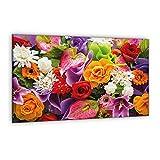 Furnigo 30701 - Placa universal (80 x 52 cm)