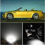 WLJH Automotive Interior & Convenience Bulbs