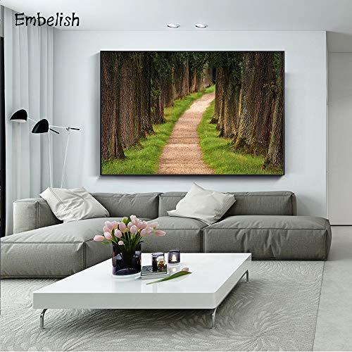 baodanla Geen frame Fotobehang kunst foto moderne home canvas in het bos landschap op het pad van de woonkamer