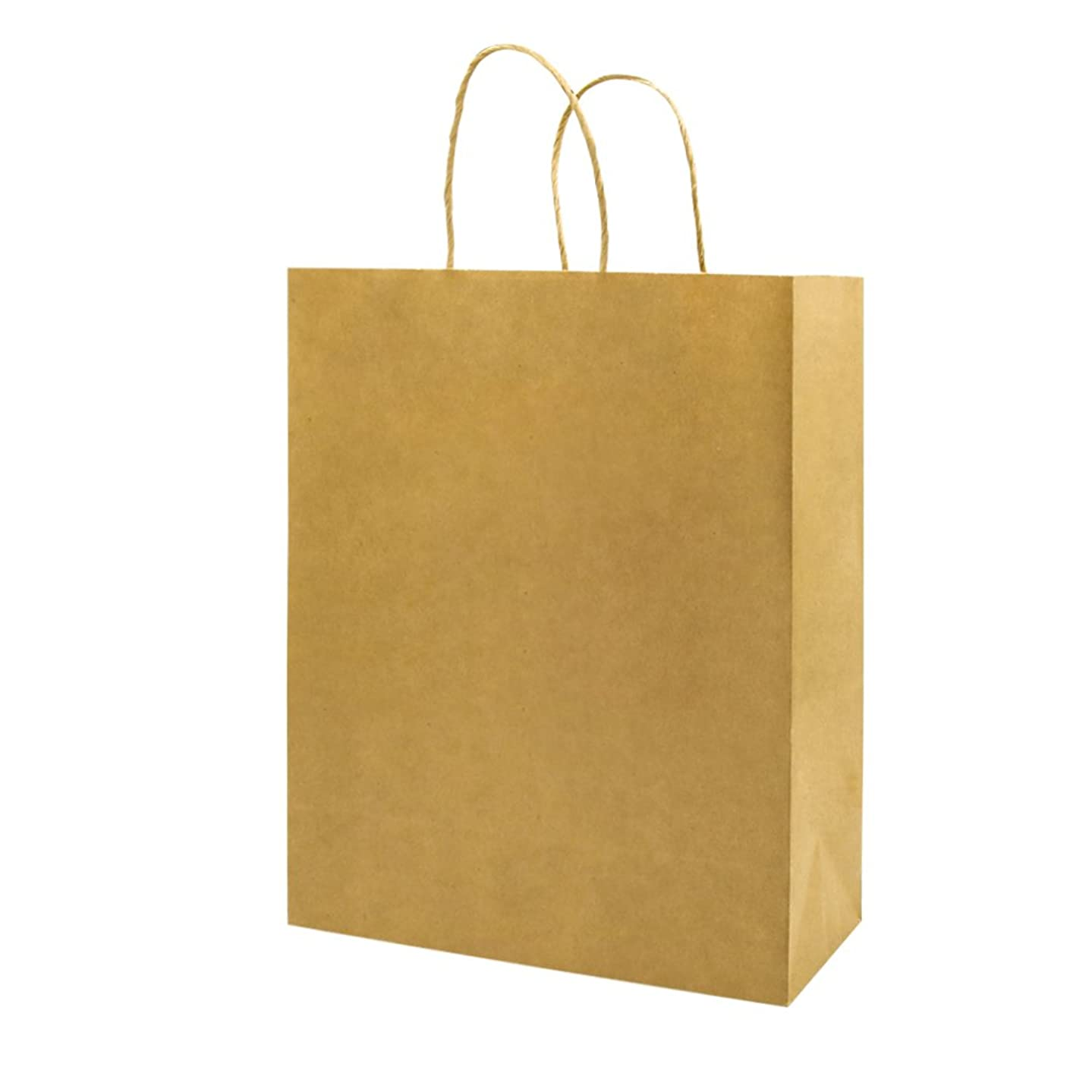bagmad Sturdy Paper Bags with Handles Bulk,10x5x13 Inch 50 Pack, Large Kraft Paper Shopping Bags,Gift Natural Party Retail Craft Brown Mechandise Take Out Bags (50Pcs Count)