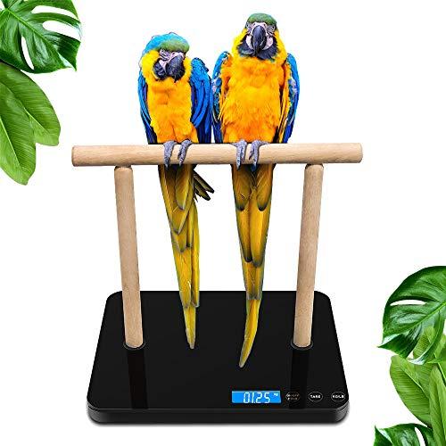 Foldable Digital Birds Weight Scale 1.0g Accuracy 15kg Capacity Bird Training Stand Portable desktop parrot habitat