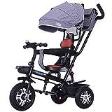 YGB Triciclo de Gama Alta Triciclos de Triciclo con toldo Ajustable, triciclos para niños con asa de Empuje, para niños de 1 a 6 años, Bicicleta de 3 Ruedas para niños pequeños