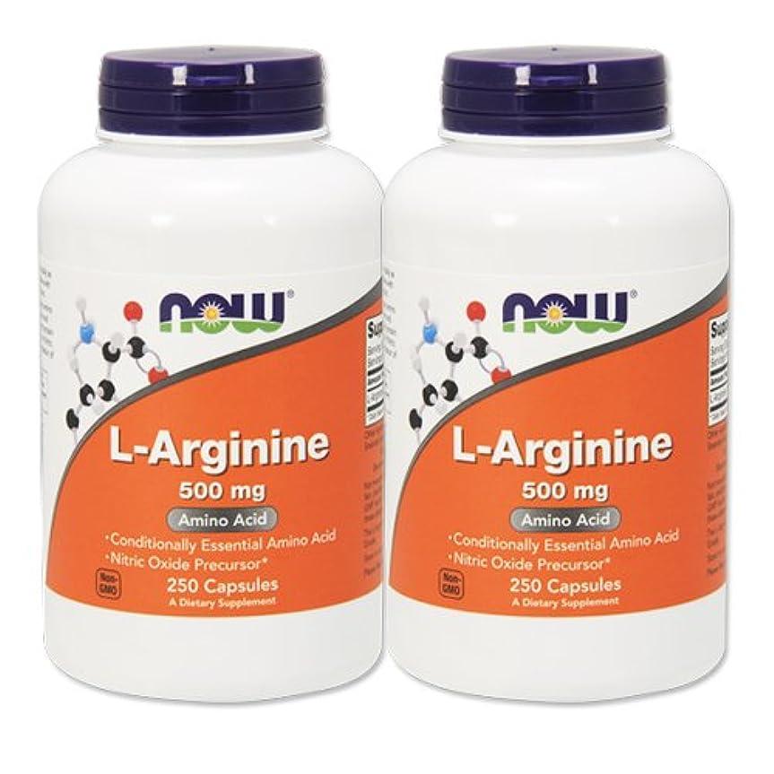 太陽かき混ぜる価値のない【2個セット】 [海外直送品] NOW FoodsLアルギニン 500mg(海外直送品) L-Arginine 500mg