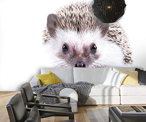Wxlsl 3D Tapete Lovely Tier Igel Kinderzimmer Schlafzimmer Hintergrund 3D Tapete Mural Foto Wand-350cmx256cm