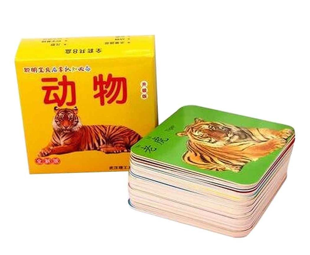 疎外する近く乱用45個絵の言葉フラッシュカード0-3歳の子供のための動物のフラッシュカード
