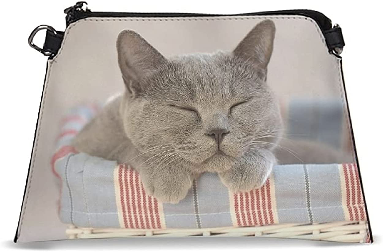 Women's PU Wristlet Cat Wallet Purse Small Handbags Crossbody Bag with Removable Shoulder Strap