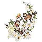 PLAUENER SPITZE Fensterbild Vögel