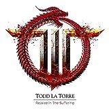 La Torre,Todd: Rejoicing in the Suffering (Audio CD)