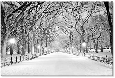SEVEN WALL ARTS Beautiful Winter Landscape Snowy Central Park Canvas Art Modern Wall Pictures product image