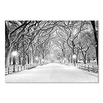 SEVEN WALL ARTS -Beautiful Winter Landscape Snowy Central Park Canvas Art Modern Wall Pictures Giclee Print on Canvas Photo Artwork for Bedroom Living Room Home Decor 36 x 24 Inch