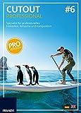 CutOut 6 professional: Spezial-Bildbearbeitungssoftware zum Freistellen und Retuschieren für die...