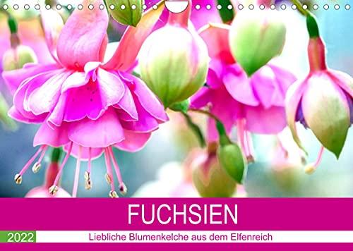 Fuchsien. Liebliche Blumenkelche aus dem Elfenreich (Wandkalender 2022 DIN A4 quer): Die anmutige Schönheit der farbenfrohen Kelche in ungewöhnlich ... 14 Seiten ) (CALVENDO Hobbys)