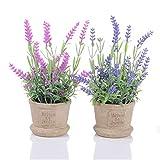 YQing 2 Piezas Lavender Maceta Artificial - Artificiales Plastico Maceta Decorativas...