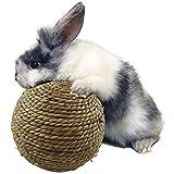 Terynbat Grasball Kleintiere Spielzeug Ball Kaninchen Meerschweinchen Hamster Gras-Spiel-Ball Kauen Spielzeug Ball Haustier Interaktive Spielzeug