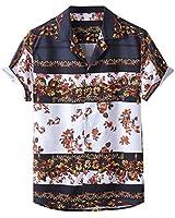 Men's Summer Hawaiian Shirt,New Casual Button-Down Printed Short-Sleeve Vintage Beach Top Brown