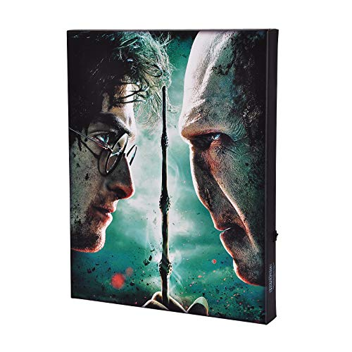 Harry Potter Wandbild mit Licht Harry vs. Voldemort 40x30x3,8cm Elbenwald Canvas
