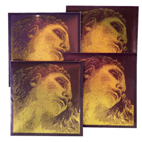 EVAH PIRAZZI GOLD Violinsaiten SATZ von Pirastro