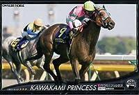 オーナーズホース/OWNERS HORSE【カワカミプリンセス】OH02-H107