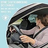 Laneta Leon und Sophie Auto Sonnenschutz - 9