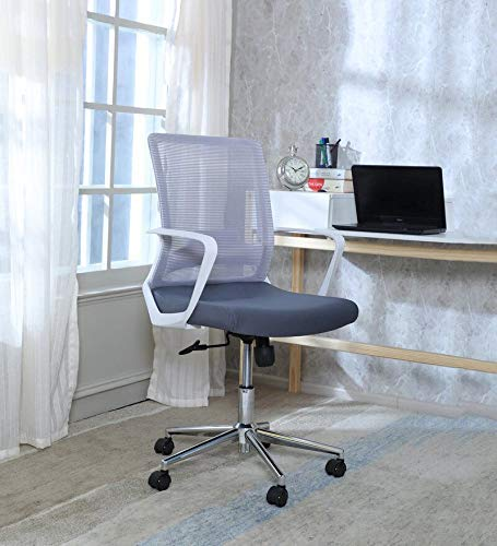 MISURAA Modern Ergonomic Office Chair (Mesh , Multicolor)