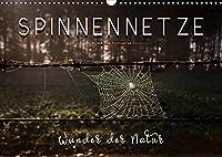 Spinnennetze - Wunder der Natur (Wandkalender 2022 DIN A3 quer): Technische Meisterleistungen der Spinnen in ausdruckstarken Bildern. (Monatskalender, 14 Seiten )