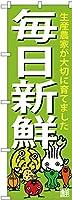 のぼり 毎日新鮮 SNB-4362 [並行輸入品]