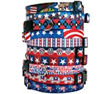 Patriotic USA Dog Collar - with Tag-A-Long ID Tag System - American Daisy - Medium 14 to 20 inch Length x 3/4 inch Wide