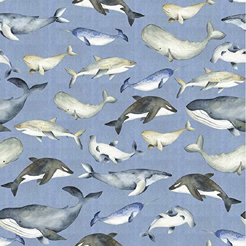 Schickliesel Organic Jersey Stoff Meterware Wale und Haie (hellblau)