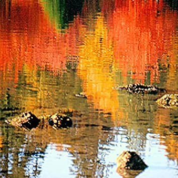 Reflections in the Lagoon
