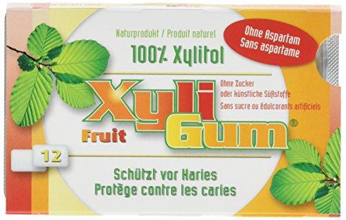 Birkengold Xyligum Frucht (12 Stück), 6er Pack (6 x 15 g)