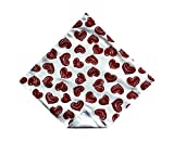 Holiday Bow Ties Mens Red Glitter Heart Valentine's Day Pocket Square, Mens (Mens)