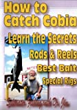How to Catch Cobia