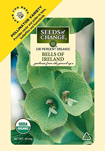 Seeds of Change S11052 Certified Organic Bells of Ireland Flower