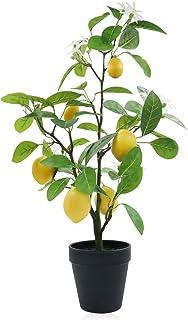 フェイクグリーン 光触媒 癒しの人工観葉植物 【かわいらしい実付き】 Xiaz 盆栽 消臭 インテリア装飾の造花レモンツリー 高さ60cm