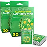 Care Touch Alcohol-Free Hand Sanitizing Wipes 2-Pack - 30 Individually Wrapped Antibacterial Hand Wipes with Vitamin E and Aloe Vera - For Babies or Adults (60 Total)