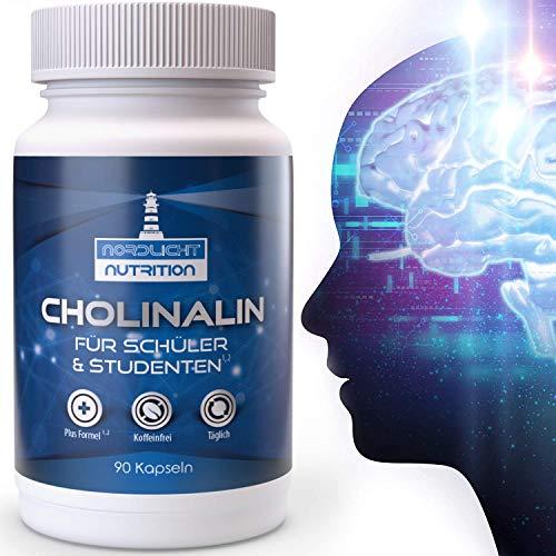 Nordlicht Nutrition® Konzentrations Tabletten² für die geistige Leistung² - Der Brain Booster¹ mit B5¹ für das Gehirn & Gedächtnis - Marken-Nootropic² (90 Kapseln) - Für Schüler & Studenten entwickelt