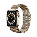 Novità AppleWatch Series6 (GPS+Cellular, 40mm) Cassa in acciaio inossidabile color oro...