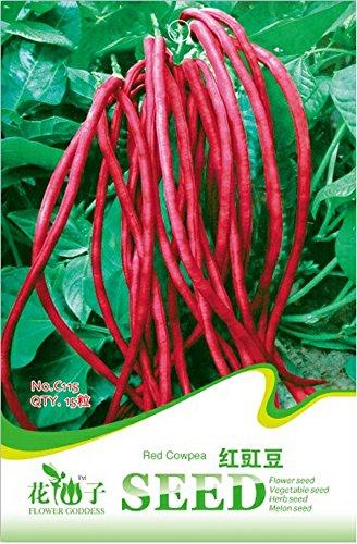 Heirloom Red long Cowpea Graines de légumes hybrides, emballage d'origine, 15 graines / Pack, non-ogm Légumes frais comestibles # C115