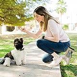 Zoom IMG-1 borsa addestramento cane porta snack