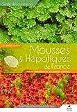 Mousses & hépatiques de France : Manuel d'identification des espèces communes