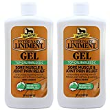 Absorbine Veterinary Liniment Gel, 12-Ounce 2 Pack...