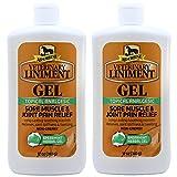 Absorbine Veterinary Liniment Gel, 12-Ounce 2 Pack