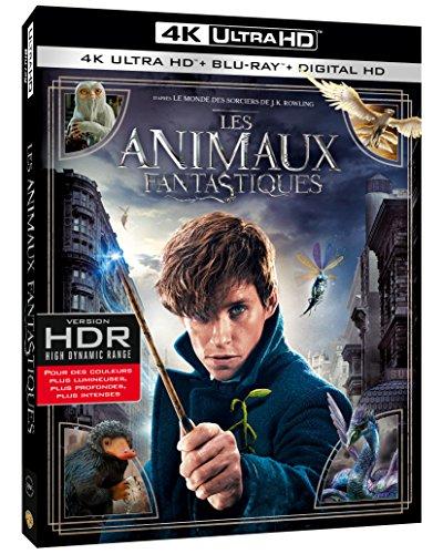 Les Animaux fantastiques - Le monde des Sorciers de J.K. Rowling - 4K Ultra HD [4K Ultra HD + Blu-ray + Digital HD]