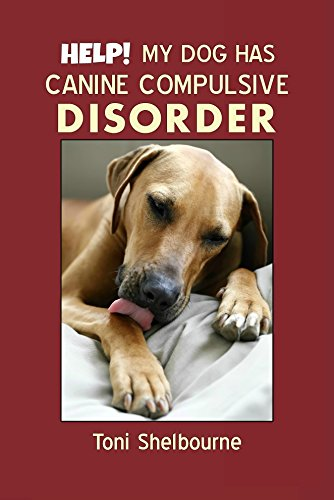 HELP! My Dog has a Canine Compulsive Disorder
