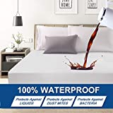 Mattress Protector Queen Premium Waterproof Super Soft Breathable Noiseless Coral Fleece Fitted Mattress Pad Cover Luxury Elastic Deep Pocket Vinyl Free Bed Cover 60x80 Inch
