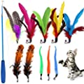 WeFine Cat Feather Toys,11Pcs Interactive Kitten Toys for indoor Cat Kitten,1 Retractable Cat Teaser Wand with 10 Feather Refills