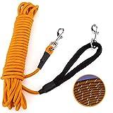PETTOM Longe pour Chien 15m Longe Corde Dressage Réfléchissante Longe d'attache Nylon-Orange