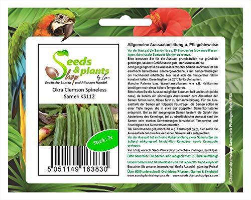 Stk - 7x Okra Clemson Spineless - Samen Gemüse Pflanze Garten Saatgut KS112 - Seeds Plants Shop Samenbank Pfullingen Patrik Ipsa