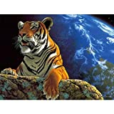 genmaimeima Peinture À l'huile 3D Peinture par Numéros Bricolage Dessin À Colorier sur Toile Peinture À La Main Peinture Murale Terre Terre Tigre 30X40Cm sans Cadre