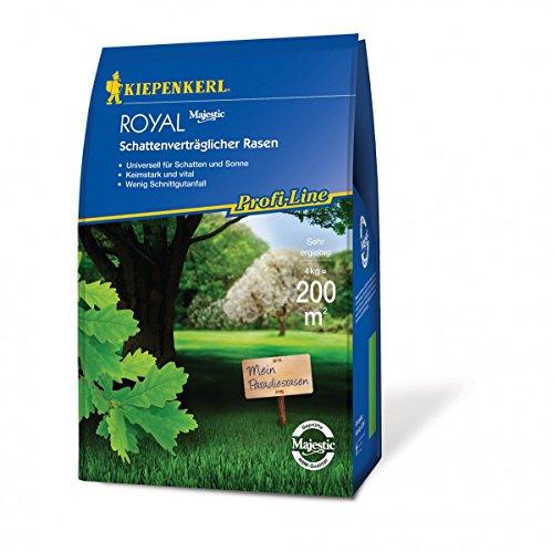 Kayser KB - Cabeza de pino para césped, compatible con sombras, 4 kg - 660908